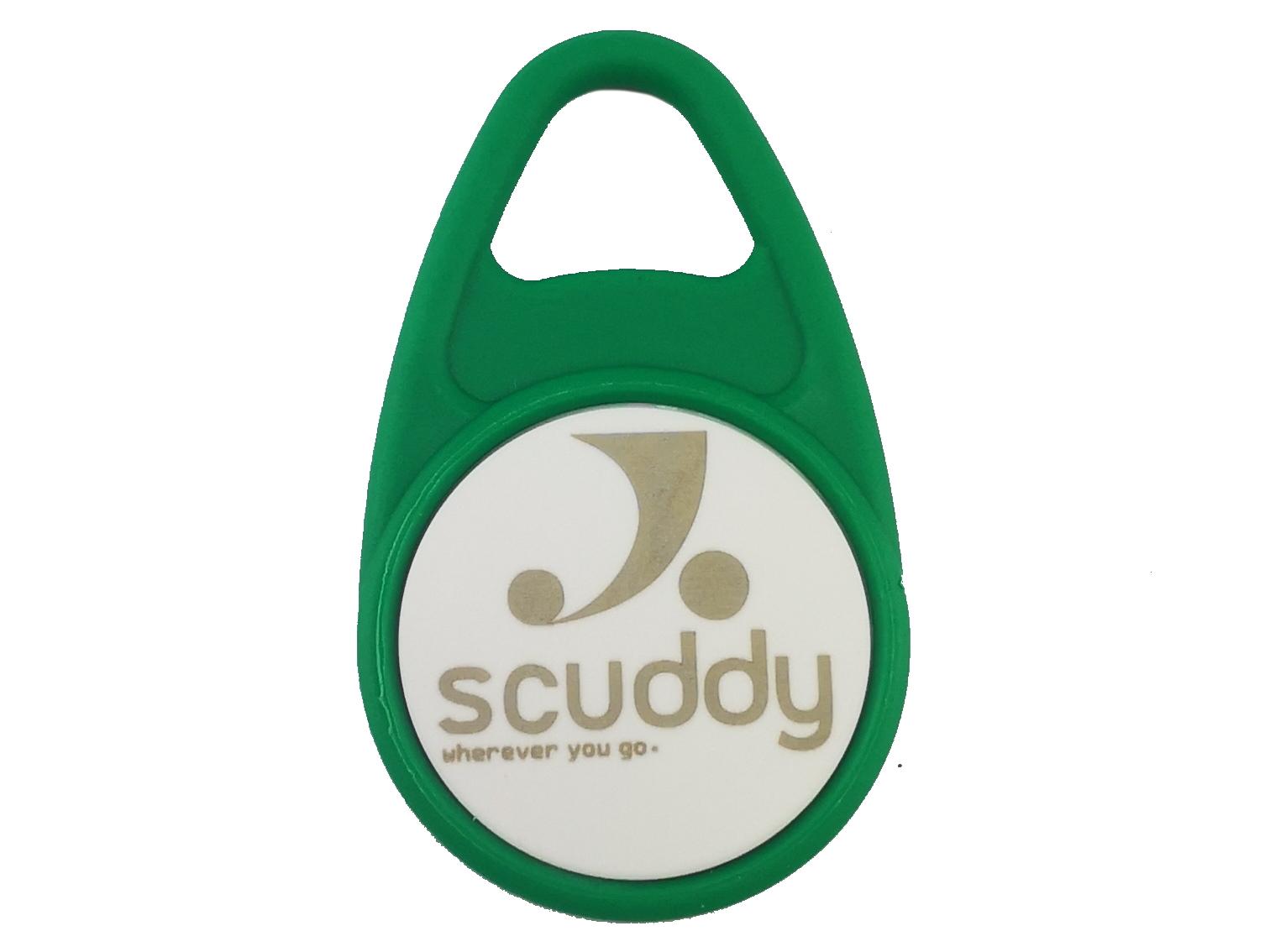 RFID Schlüsselanhänger Grün